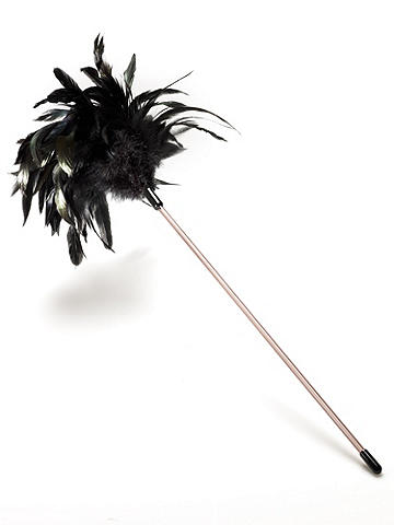 Fabulous Feather Duster - Tickle your fancy and top off your look in one fell swoop with our fabulous feather duster! Made from genuine feathers. Imported.